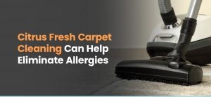 Citrus Fresh Can Help Eliminate Allergies