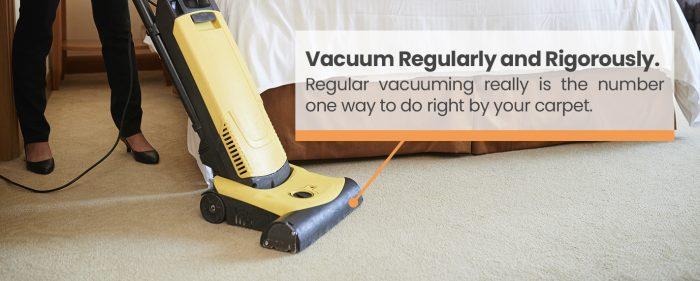 vacuum regularly and rigorously image