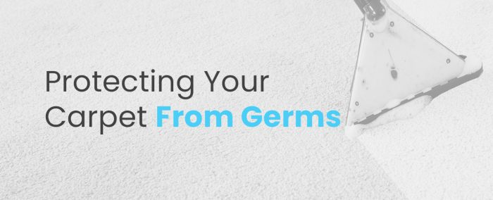 Protecting-Your-Carpet-From-Germs
