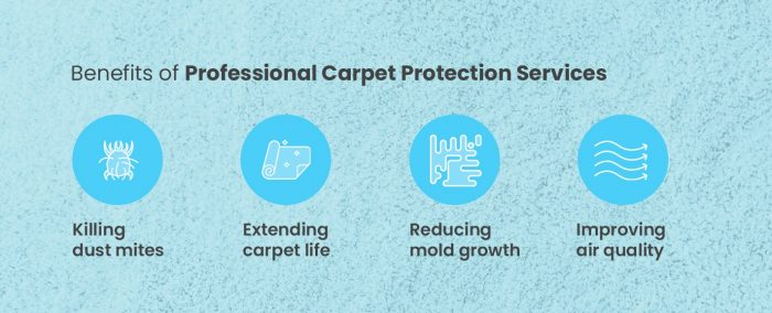 Benefits of Professional Carpet Protection Services